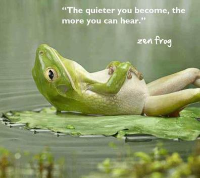 zen-frog-22