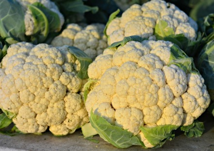 cauliflower-1024x719.jpg
